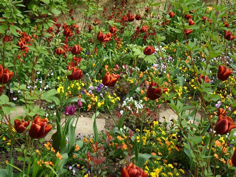 in color worcester worcester college gardeners colour