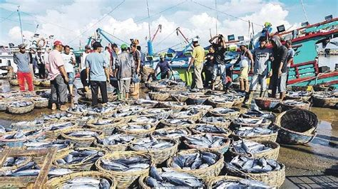 ikan aceh dibawa  luar serambi indonesia