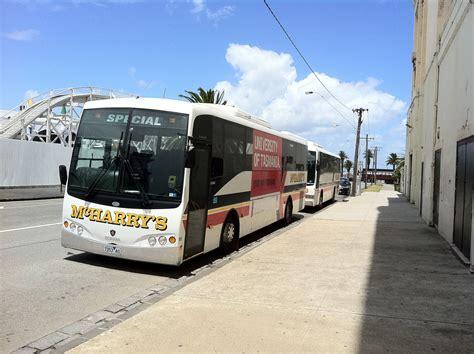 theme park express tx2 bus mcharrys australia showbus com bus image gallery