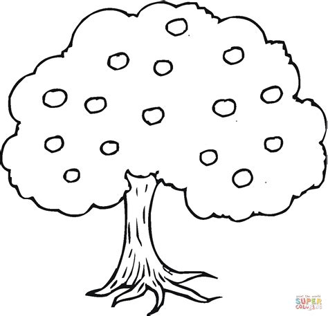 coloring page of a apple tree apple tree coloring page free printable coloring pages