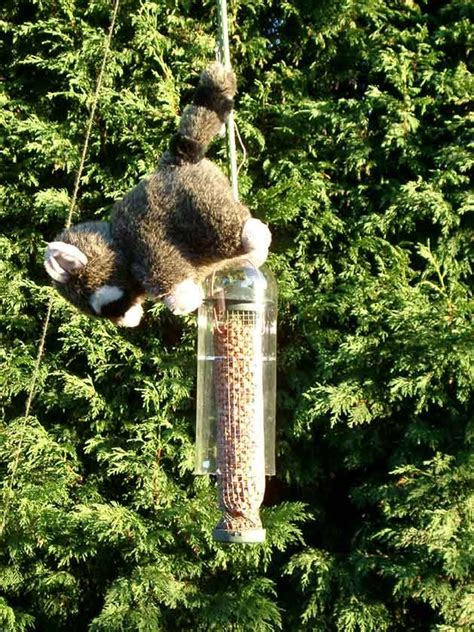 diy squirrel proof bird feeder lol this is genius also