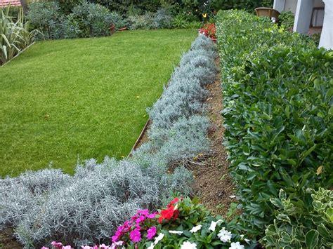 come fare un bel giardino come ricavare un bel giardino da un modesto terreno in