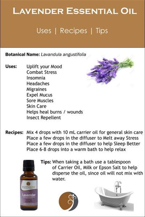 essential glow recipes tips for using essential oils books 108 best images about lavender essential on