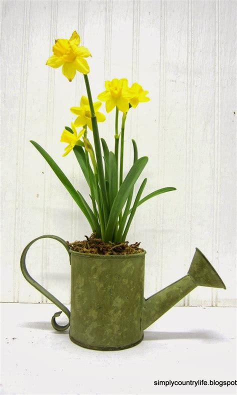 watering can centerpieces best 25 watering can centerpieces ideas on watering cans quince themes and