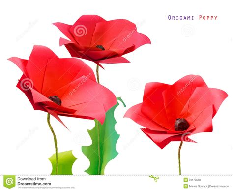 origami poppy origami poppy flower3 royalty free stock photos image