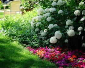 partial shade garden ideas images