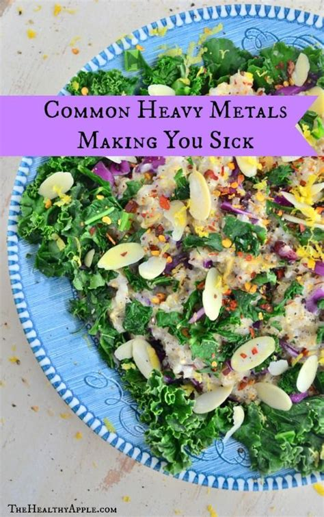 Best Foods For Detoxing Heavy Metals by How To Detox Your Chelation Therapy Mercury