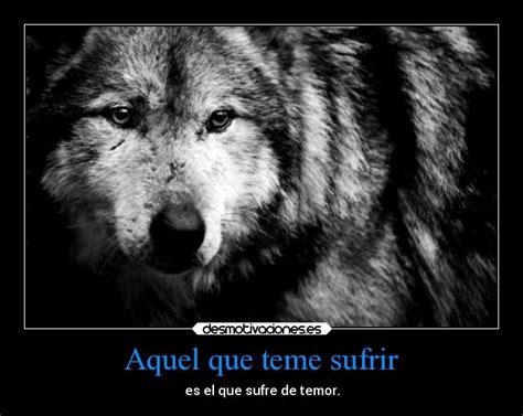 imagenes con frases de amor con lobos im 225 genes y carteles de 111alba desmotivaciones