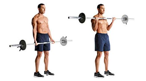 Barbell Curl Exercises For Biceps Benefits Of Exercise