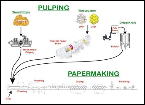 Paper Process - how is paper made articlefind