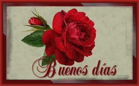 imagenes de buenos dias con rosas lindas fotos de rosas con mensajes tiernos imagenes de rosa