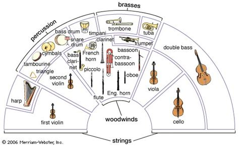 evolution of the orchestra history of