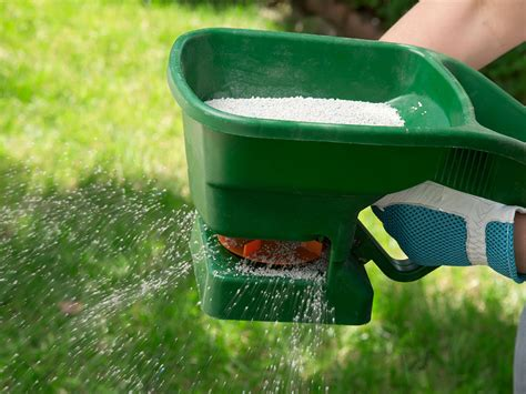 fertilize the lawn in late summer homezada