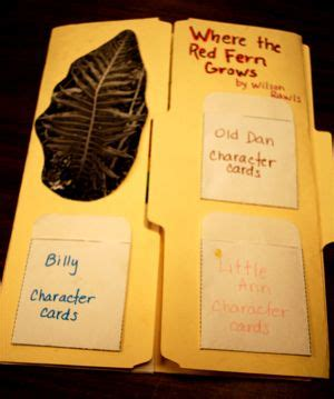book report on where the fern grows 11 best where the fern grows images on