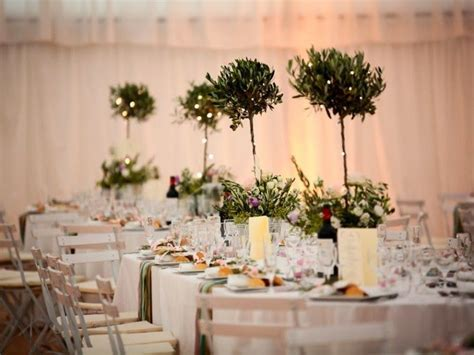 love this for the olive tree topiary centerpieces