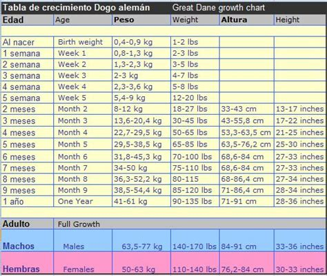 great dane puppy growth chart great dane growth chart tabla de crecimiento gran dan 201 s animal