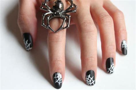 Cat Acrylic Di Gramedia cinque idee per la nail di donna fanpage