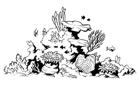 coral reef clipart black and white coral reef by colbybluth on deviantart