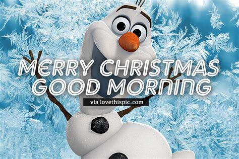 olaf merry christmas good morning image pictures   images  facebook tumblr