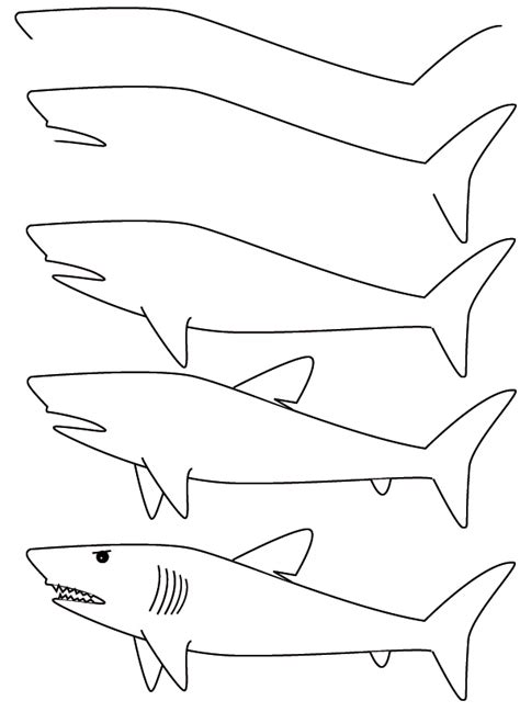 how to draw a doodle shark drawing a shark finally easy directions for the boy who