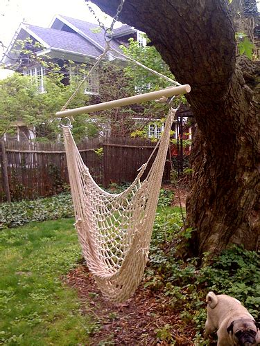 Tree Hammock Swing Ljcfyi Hammock Swing