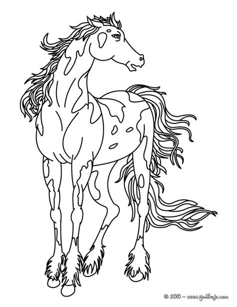 wild horse coloring p coloring pages