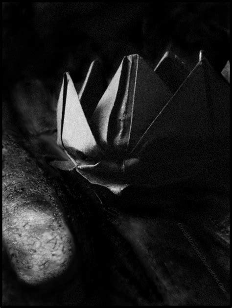 Black Lotus Origami - black lotus by circusmonsters on deviantart