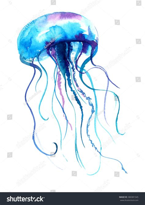 jellyfish watercolor illustration medusa painting isolated