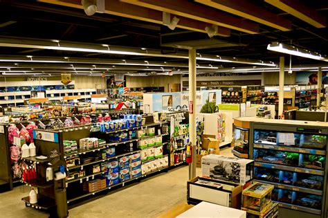five below store ny related keywords suggestions five below store image gallery petco interior