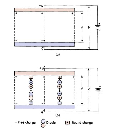 capacitor bound charge polarization and dielectric constant