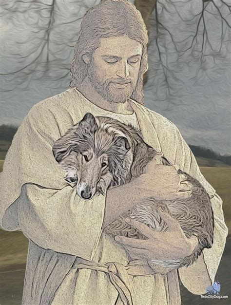 jesus in dogs 17 best images about god made animals and god saw that it was on god
