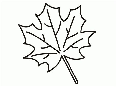 coloring page of a leaf leaves coloring pages printable az coloring pages