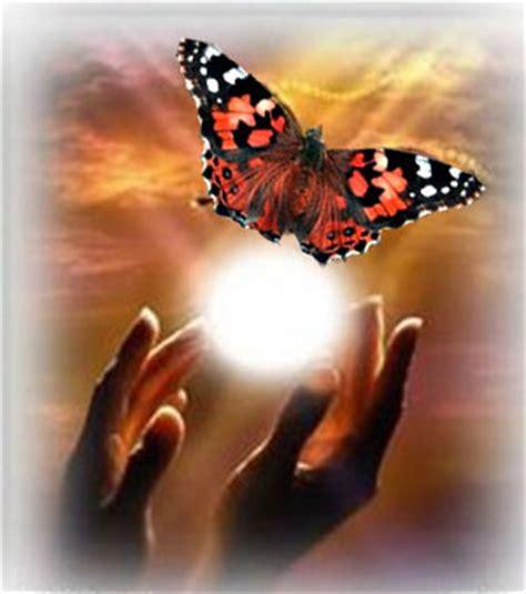 imagenes de mariposas q brillan grupo de meditaci 243 n masaje metam 243 rfico