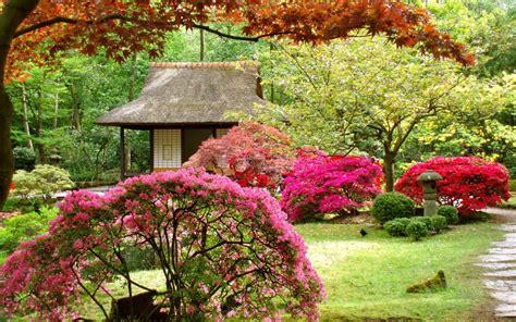 japanese flower garden flowers ideas for review