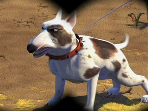 dogs name in story story breed www pixshark images galleries