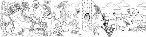 coloring pages of animals in their habitats 10 best images of my favorite animal worksheet