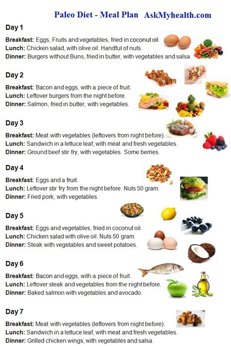 food diet plan 15 day paleo diet meal plan every thing about paleo diet