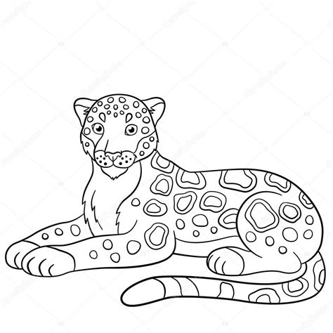 imagenes de jaguares para dibujar dibujos para colorear sonrisas de lindo jaguar archivo
