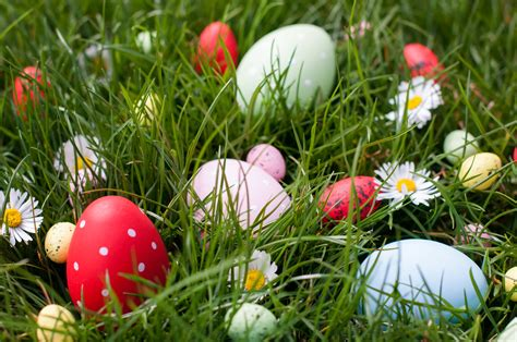 easter egs enjoy easter egg and webinar hunting business review