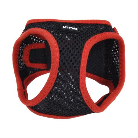 best harness for small dogs what is the best harness for small dogs