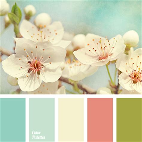 shabby chic colour schemes colour in the style of quot shabby chic color palette ideas