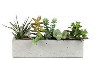 Indoor Planter Concrete Windowsill Planter Modern Indoor Pots And