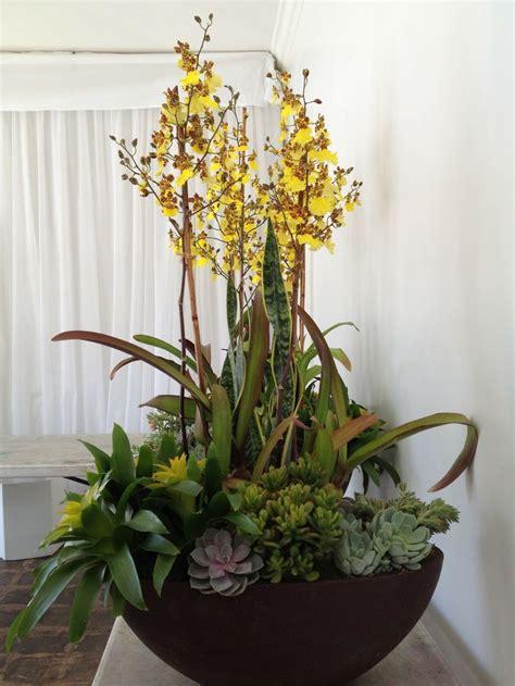 garden arrangements 38 best images about orchid arrangements on pinterest