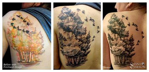 aspen tree tattoo cat tattoos shanti sketched aspen trees and birds