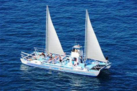 catamaran gran canaria dolphin gran canaria boat trips daily catamaran dolphin