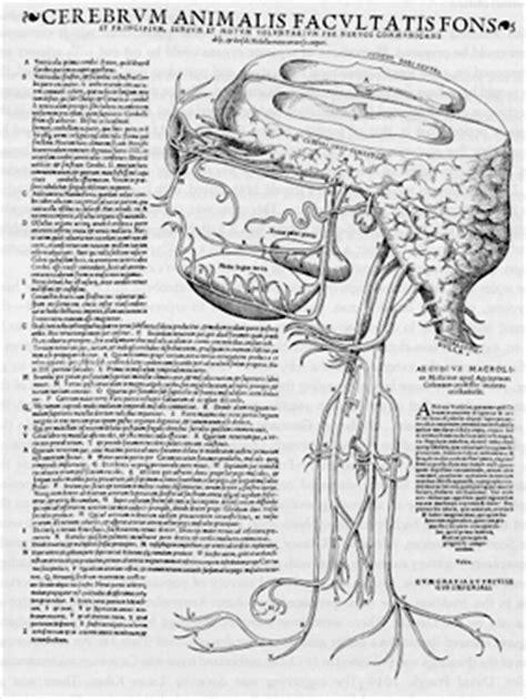 Head of Neuroscience: Ancient History of Neuroscience