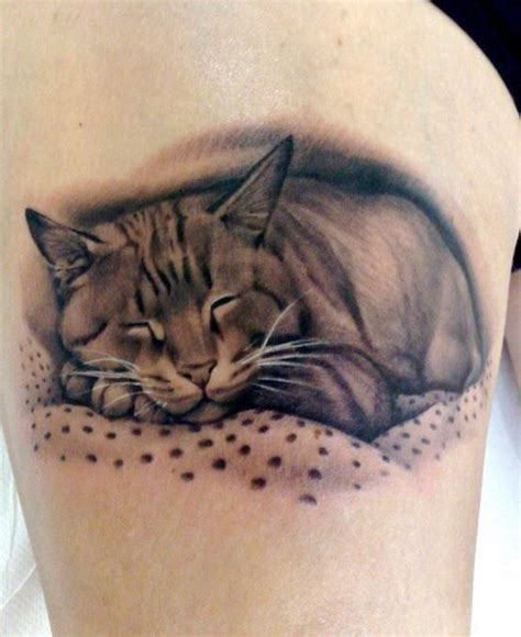 cat tattoo on belly 40 best stomach tattoos images on stomach