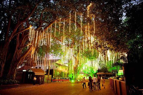 decorations tree lights tree decoration with drop lights wedding ideas