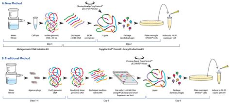 metagenomic dna isolation kit for water