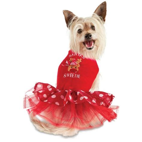 petco dogs for sale petco cyber monday sale save up to 60 free shipping gifts for dogs and cats
